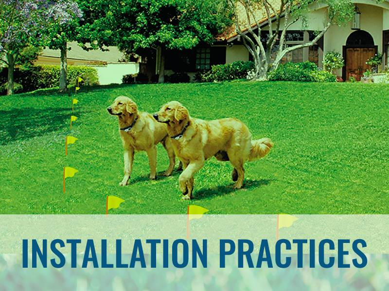 Pet Stop Installation Practices