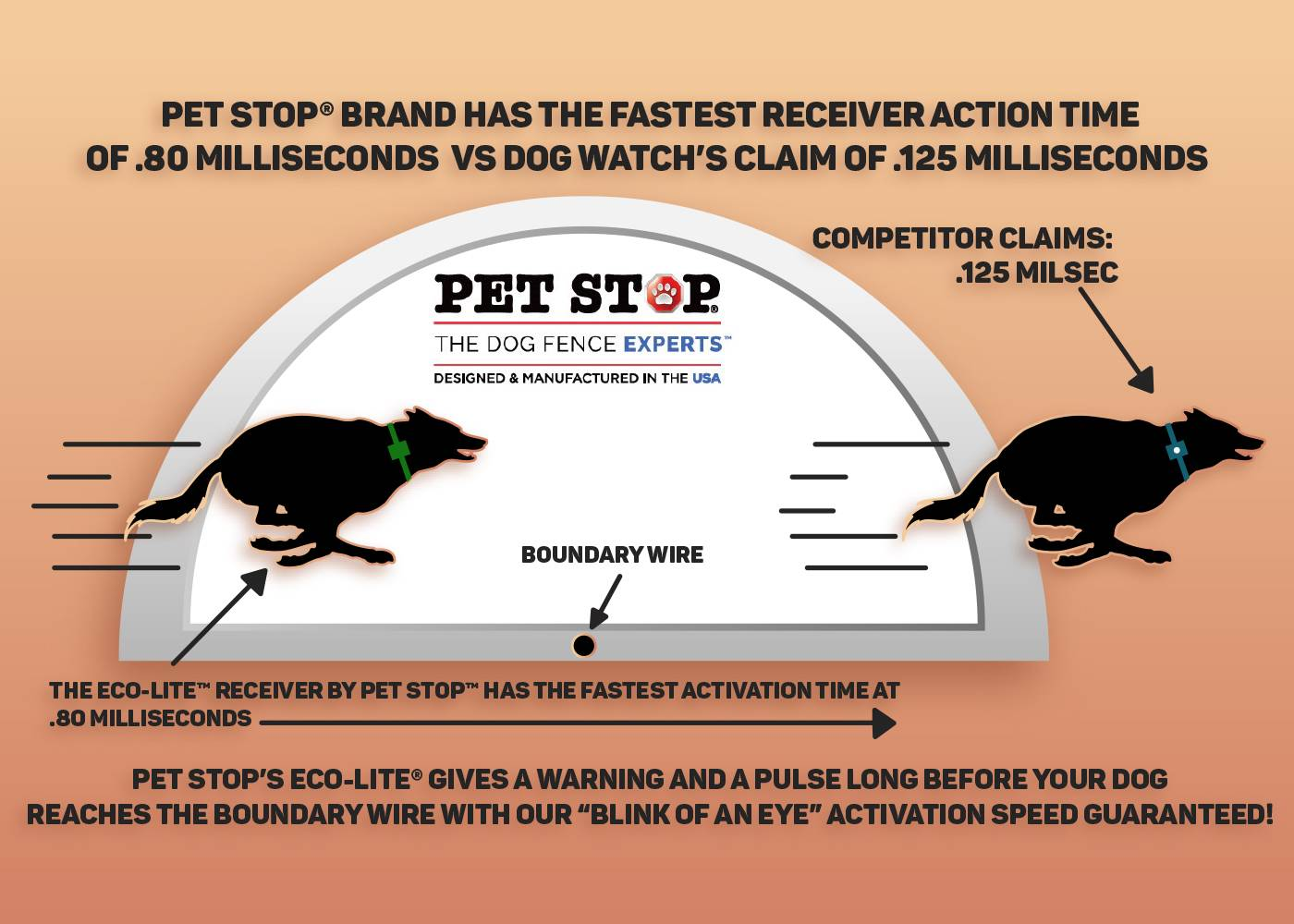 Myth Vs Truth Atlanta Pet Stop